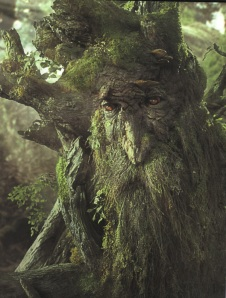 a tree with a face, from Lord of the Rings